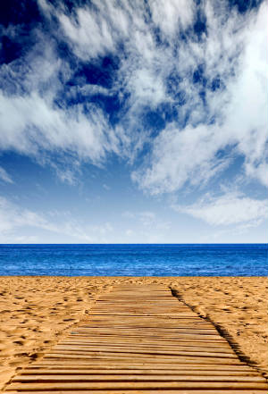 bigstockphoto_Route_To_Happiness_-_Beach_Pat_1265292.jpg
